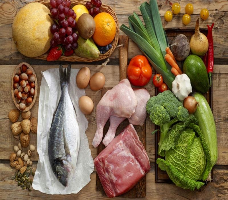 Fornitura Alimenti